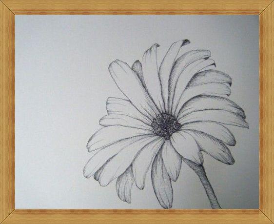 Gambar Sketsa Bunga Unik