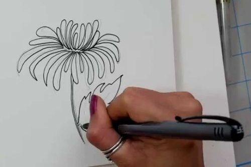 Menggambar Sketsa Bunga
