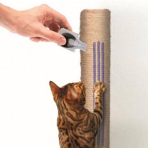 Papan garuk kucing